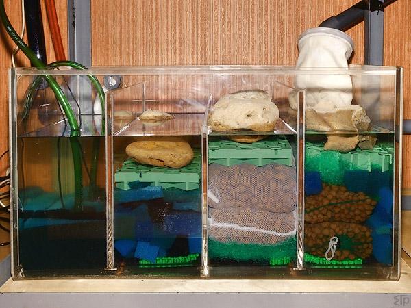 1200-литровый аквариум